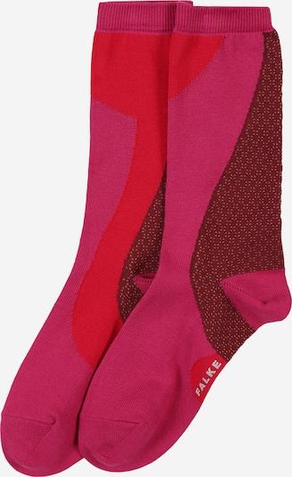 FALKE Socken 'Grafic Jam SO' in aubergine / pitaya / orangerot, Produktansicht