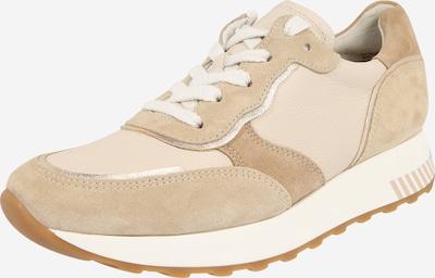 Paul Green Sneaker in beige, Produktansicht