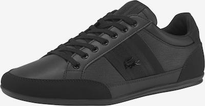 LACOSTE Sneaker 'Chaymon 419 1 Cma' in schwarz, Produktansicht