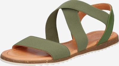 Apple of Eden Sandale 'SS20-BETA' in khaki, Produktansicht