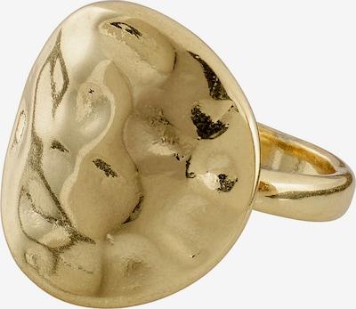 arany Pilgrim Gyűrűk 'Cornelia', Termék nézet