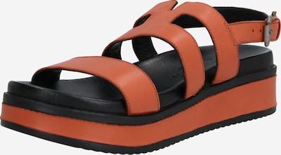SHABBIES AMSTERDAM Sandalen met riem in de kleur Cognac, Productweergave