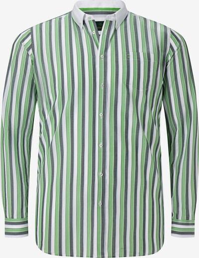 Charles Colby Hemd in grün / weiß, Produktansicht