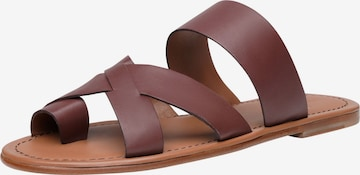 SHOEPASSION T-Bar Sandals 'No. 9115 MP' in Brown