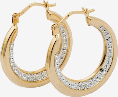 FIRETTI Creolen in gold, Produktansicht