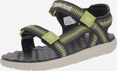 TIMBERLAND Sandale 'Perkins Row Webbing' in braun / grau / hellgrün, Produktansicht