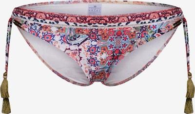 watercult Bikini donji dio u miks boja, Pregled proizvoda