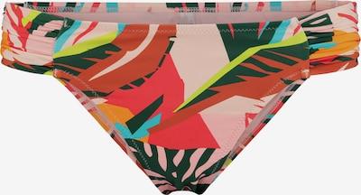 Shiwi Bikinihose 'Frangipani' in mischfarben, Produktansicht
