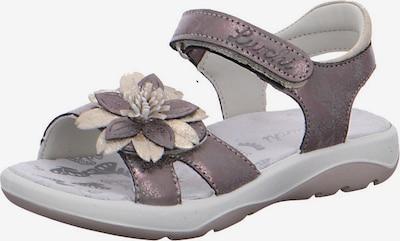 LURCHI Sandale 'Fini' in rosegold / pastelllila, Produktansicht