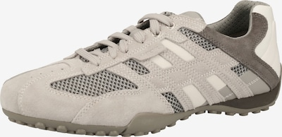 GEOX Sneaker in creme / grau: Frontalansicht