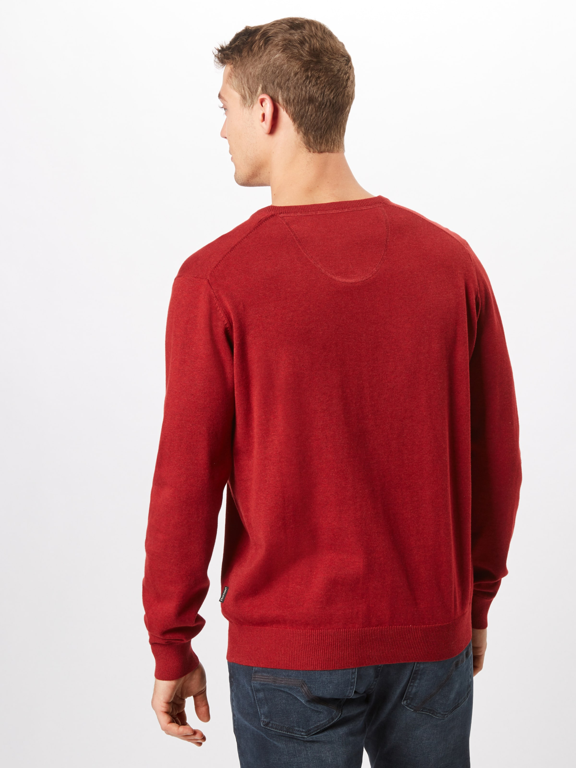 hatton Fynch Fynch hatton In Rot Pullover IgY6mfv7by