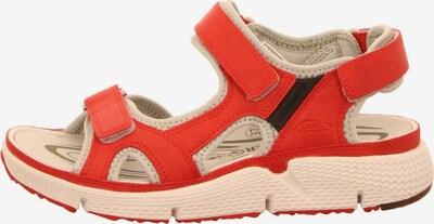 ALLROUNDER BY MEPHISTO Sandale in rot, Produktansicht
