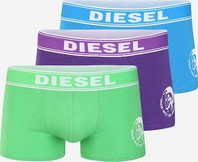 DIESEL Boxer in blau / grün / lila, Produktansicht