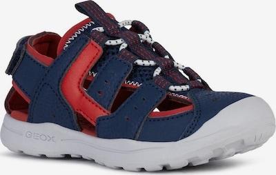 GEOX Kids Sandale in navy / grenadine, Produktansicht