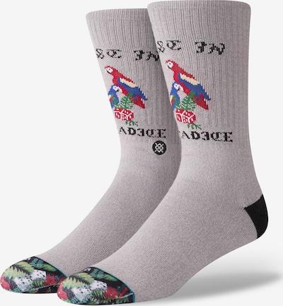 Stance Socke 'Paradice' in hellgrau / mischfarben, Produktansicht