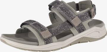 Sandales 'X-trinsic' ECCO en gris