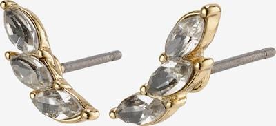 Pilgrim Øreringe 'Mathilde' i guld / sølv, Produktvisning