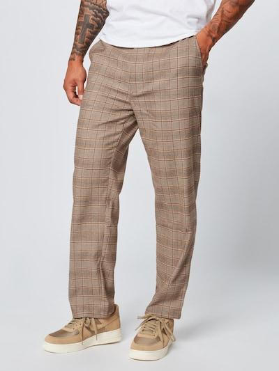 Iriedaily Hose 'Woolio' in beige / braun: Frontalansicht