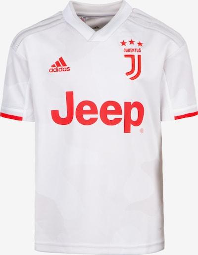ADIDAS PERFORMANCE Fußballtrikot 'Juventus Turin 19/20 Auswärts' in orangerot / weiß, Produktansicht