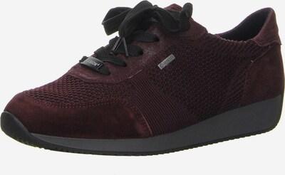 ARA Sneaker in burgunder, Produktansicht