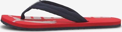 PUMA Zehentrenner 'EPIC FLIP V2 JR' in blau / rot, Produktansicht