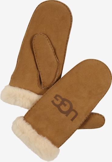UGG Fäustlinge in beige / hellbraun, Produktansicht
