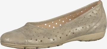 GABOR Ballet Flats in Grey