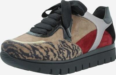 SEMLER Sneakers in grau / taupe / rot, Produktansicht