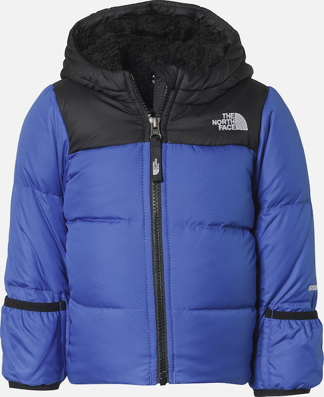 THE NORTH FACE Winterjacke in blau: Frontalansicht