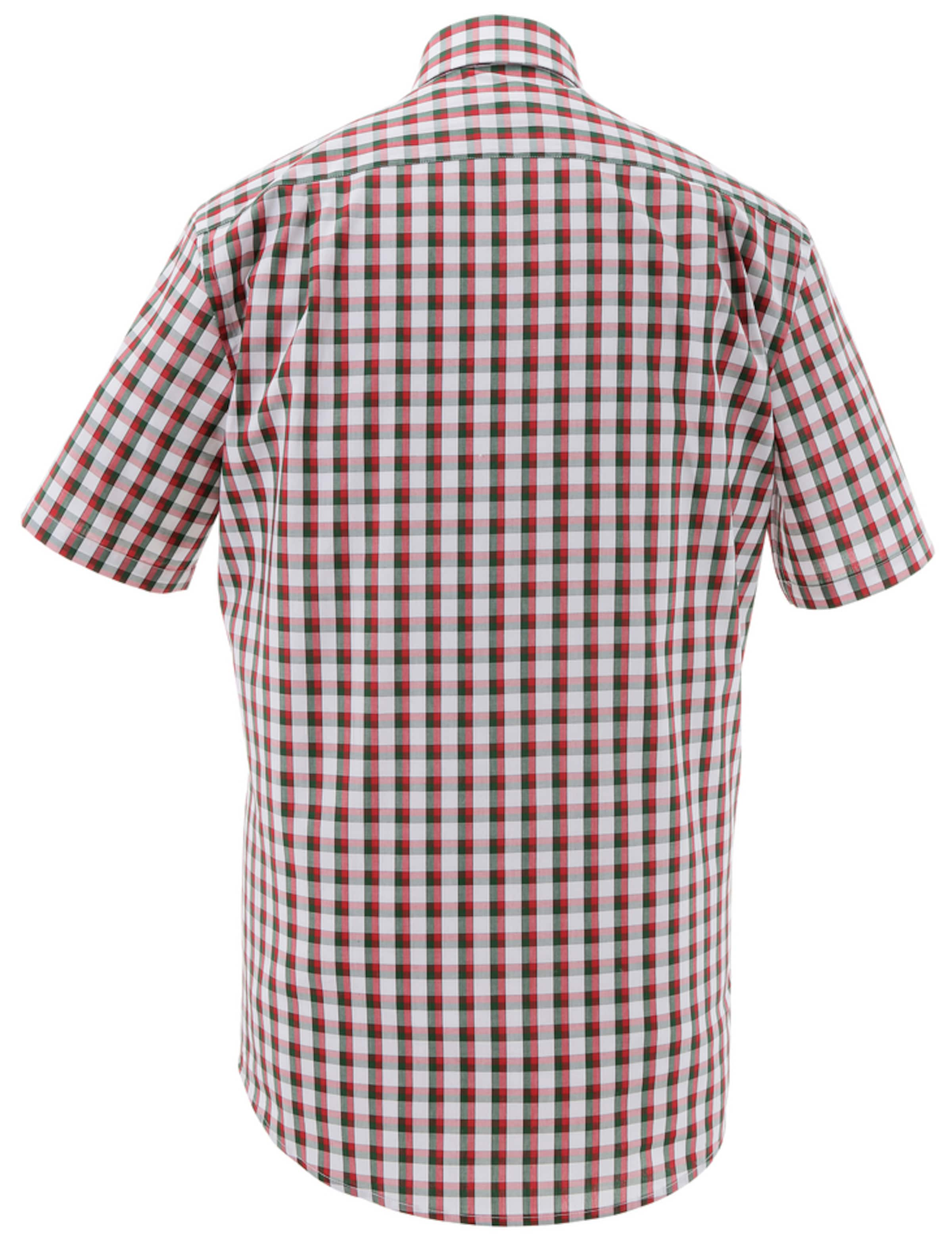 Verkaufsschlager Viele Arten Von Günstigem Preis ALMSACH Trachtenhemd kariert in frischer Farbkombination Billige Visum Zahlung Bester Großhandel Zu Verkaufen Verkauf Extrem rkrg8K5ThF