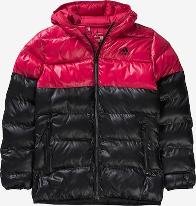 ADIDAS PERFORMANCE Winterjacke in himbeer / schwarz, Produktansicht