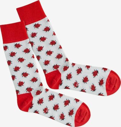 DillySocks Chaussettes 'Snow Bug' en rouge / blanc, Vue avec produit