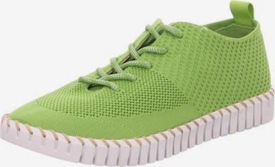 LA STRADA Schnürschuh in hellgrün, Produktansicht
