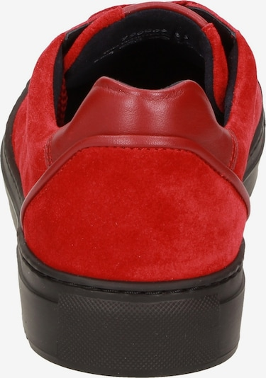 SIOUX Sneakers laag ' Rosdeco-700 ' in Rood yqbKB9g5