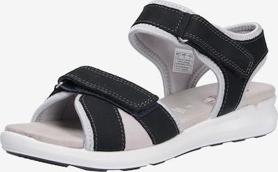 ARA Sandalen in schwarz / weiß, Produktansicht