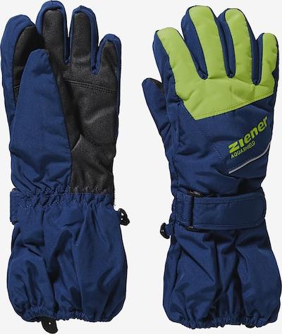 ZIENER Skihandschuhe 'LOMO' in blau / neongrün / schwarz, Produktansicht