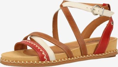 PIKOLINOS Sandalen in braun / rot / weiß, Produktansicht