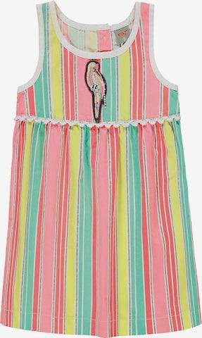 KANZ Kleid 'Papagei' in Mischfarben