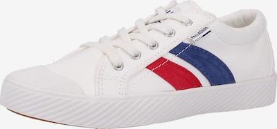 Palladium Sneaker in blau / rot / weiß: Frontalansicht