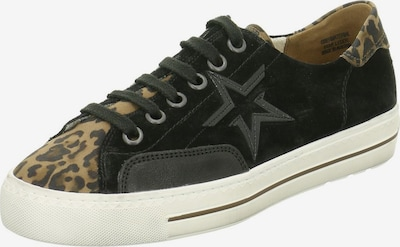 Paul Green Schnürschuhe in braun / schwarz, Produktansicht