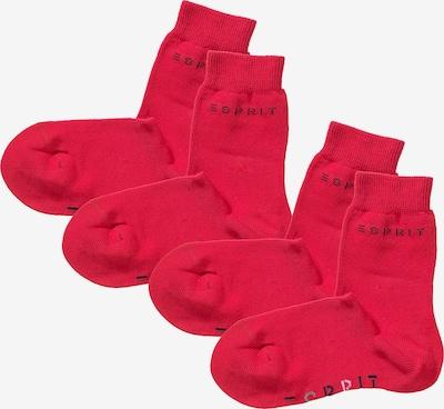 ESPRIT Socken Doppelpack in rot, Produktansicht