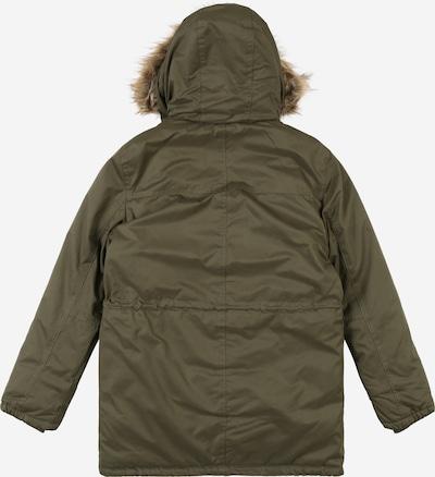 REVIEW FOR TEENS Zimska jakna 'TB-19-J900'   oliva barva: Pogled od zadnje strani