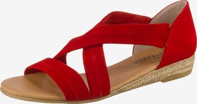 Paul Vesterbro Klassische Sandalen in rot, Produktansicht