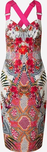 Ted Baker Kleid 'Kloeey' in pink / weiß, Produktansicht