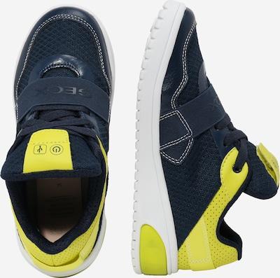 GEOX Sneaker in navy / neongrün: Seitenansicht