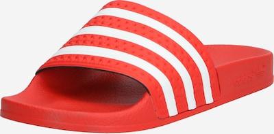 Saboți ADIDAS ORIGINALS pe roșu / alb, Vizualizare produs