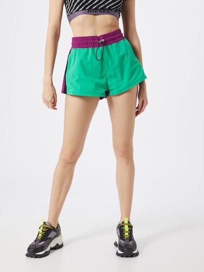 DIESEL Shorts 'FLYNN' in grün / lila, Modelansicht