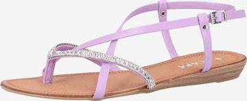 SCAPA Sandale in Lila