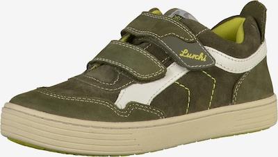LURCHI Sneaker in oliv: Frontalansicht