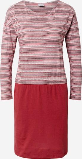 Iriedaily Kleid in weinrot, Produktansicht